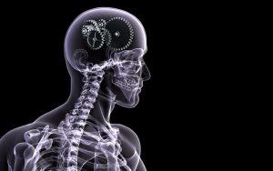Психологічні ефекти, котрі міняють нашу поведінку